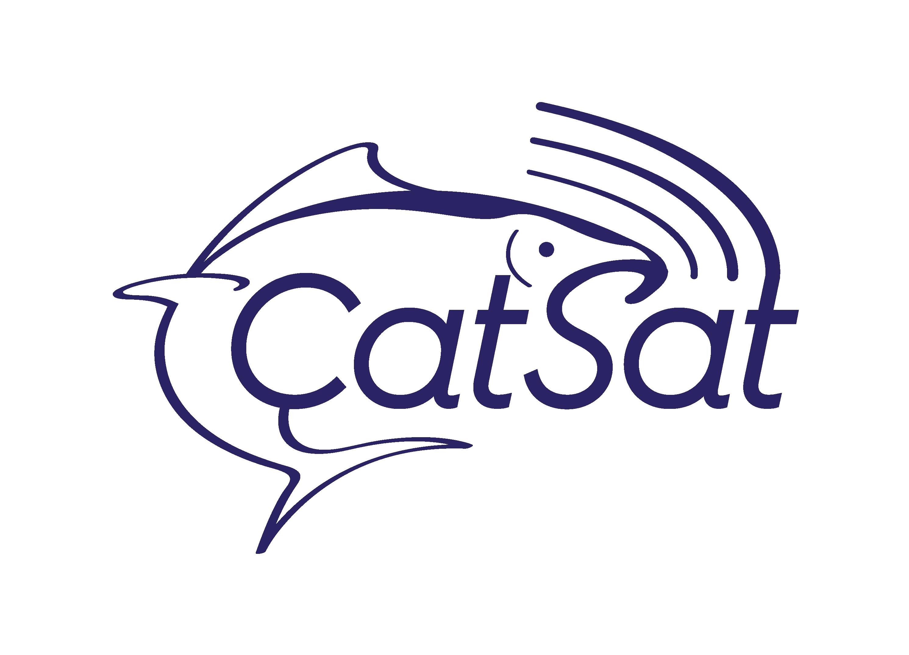 Catsat Logo
